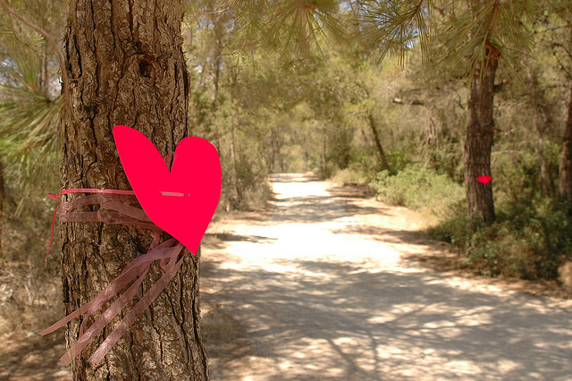 Trouwen op Ibiza, Follow your heart